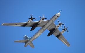 Picture bear, bomber, Russia, BBC, Tu-95MS, long-range aviation