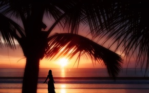 Picture beach, girl, sunset, palm trees, the ocean, the evening, silhouette