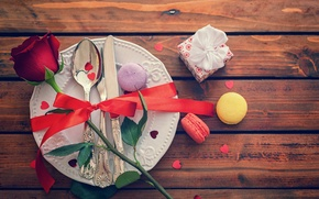 Picture flower, holiday, gift, Board, rose, plate, tape, bow, cakes, confetti