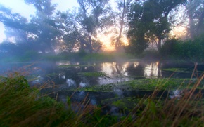 Picture rays, fog, river, dawn, morning