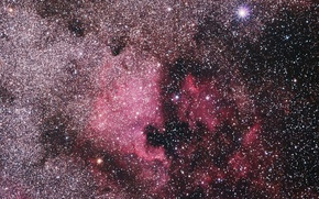 Picture Nebula, North America, NGC 7000, North American Nebula