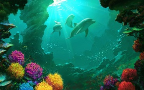 Picture sea, water, landscape, beauty, fish, corals, art, dolphin, reefs