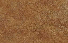 Wallpaper leather, leather, texture, skin