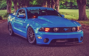 Picture Mustang, Ford, Road, Blue, Ford, Muscle, Mustang, Car, Blue, Front, 5.0, Before, Road, Kar, Oil