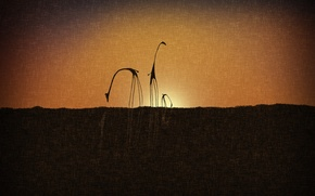Picture sunset, canvas, style, giraffes, silhouettes, vladsudio