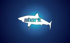 Picture Shark, sea, minimalism, blue