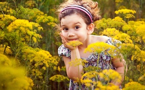 Wallpaper girl, child, surprise, meadow