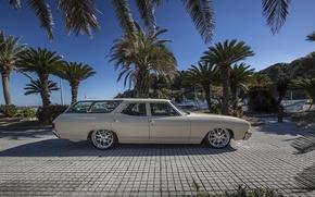 Picture Chevrolet, chevrolet, chevelle, wagon, Shevel
