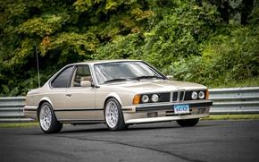 Picture BMW, E24