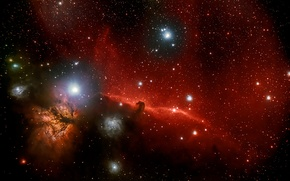 Picture Horse Head, Orion, in the constellation, dark nebula
