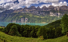 Wallpaper trees, mountains, lake, Switzerland, Alps, meadow, panorama, Switzerland, Alps, the Walensee, Walensee, Lake Walen