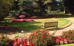 Picture bench, nature, photo, England, garden, Barnet, Beale Arboretum