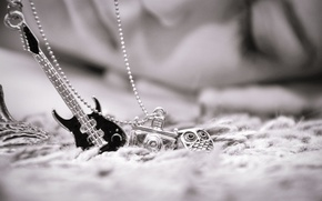 Picture decoration, owl, guitar, the camera, black and white