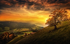 Picture the sky, clouds, sunset, mountains, tree, field, treatment, Switzerland, valley, slope, glow, houses, forest, Switzerland, …