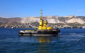 "Picture tug, sea, Novorossiysk, ""Stormy"", worker"