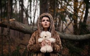 Wallpaper toy, girl, bear, forest
