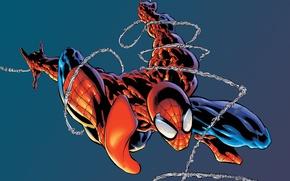 Picture background, marvel, comic, comics, marvel, Spider-Man, Spider-Man