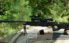 Picture sight, rifle, muffler, sniper, International AW, Accuracy