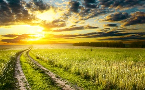 Picture road, field, the sky, grass, the sun, clouds, track