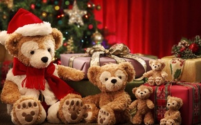 Picture Bear, Christmas, New year