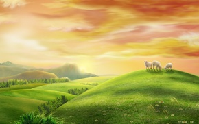 Wallpaper morning, meadow, sunrise, pasture, summer, space