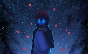 Picture the sky, stars, night, anime, petals, art, guy, Tink Of The Sensen, leonardo watch, hikari …