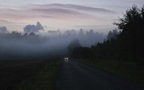 Wallpaper misty, mist, road, woodland, car, fog, foggy, morning, dawn, sunrise