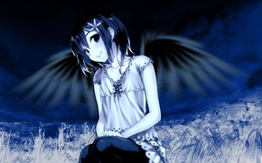 Picture girl, wings, anime