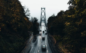 Picture road, autumn, trees, machine, bridge, the city, wet