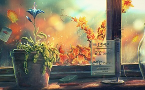 Picture flower, window, art, pot, sill, thermometer