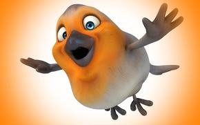 Picture flight, bird, flying, bird
