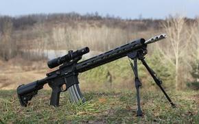 Picture optics, the sniper variant, modification, Built AR-15, fry