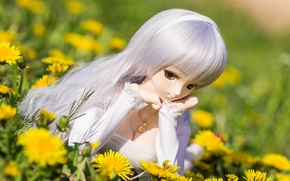 Picture summer, doll, dandelions, watch