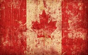 Wallpaper flag, Canada, maple leaf