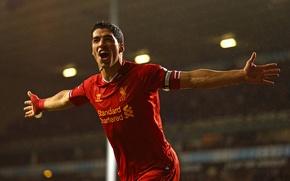 Picture Sport, Football, Football, Liverpool, Sport, Luis Suarez, Liverpool Football Club, Luis Alberto Suárez Díaz