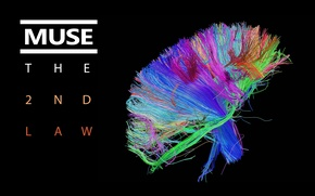Picture colors, Muse, cover, brain, bundle, The 2nd Law, wires