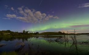 Picture the sky, trees, nature, Northern lights, pond