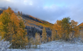 Picture autumn, the sky, clouds, snow, trees, mountains