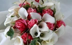Picture flowers, roses, bouquet, composition, Calla lilies
