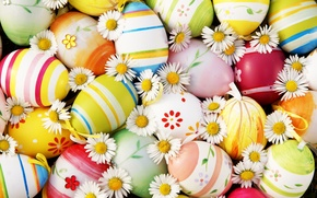 Picture flowers, chamomile, eggs, Easter, flowers, Easter, eggs