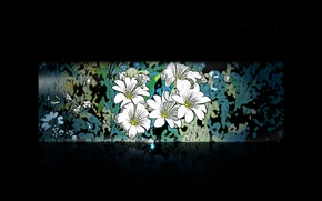 Picture flowers, the dark background, pattern, minimalism