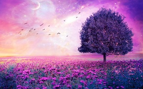 Picture tree, birds, Violet