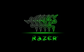 Picture Wallpaper, logo, logo, Razer