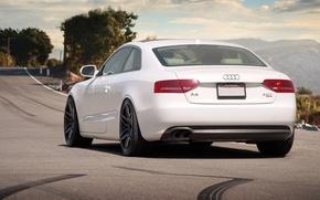 Picture Audi, white