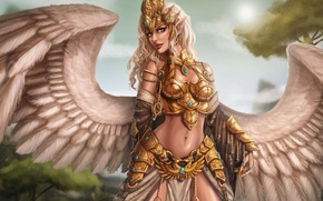 Picture girl, fiction, wings, art, armor, Griffin