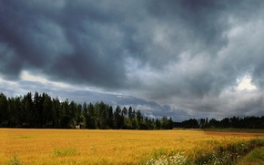 Picture field, the sky, clouds, storm, Nature, storm, sky, nature, scenery