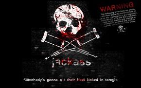 Wallpaper blood, skull, phrase, Cranks, crutches