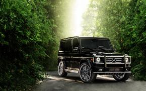 Wallpaper Mercedes-Benz, Auto, Tuning, Mercedes, Machine, Jeep, SUV