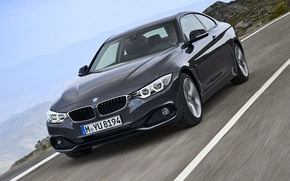 Picture road, landscape, coupe, BMW, the fourth series