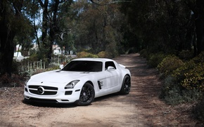 Picture white, trees, white, SLS AMG, Mercedes Benz, front view, toned, black rims, Mercedes Benz, SLS …